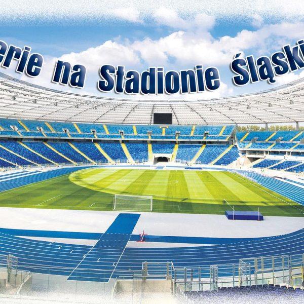 Ferie na Stadionie Śląskim