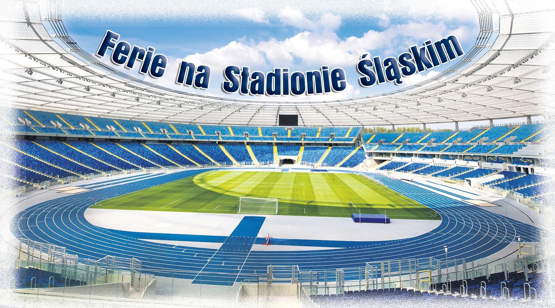 stadium pitch photo
